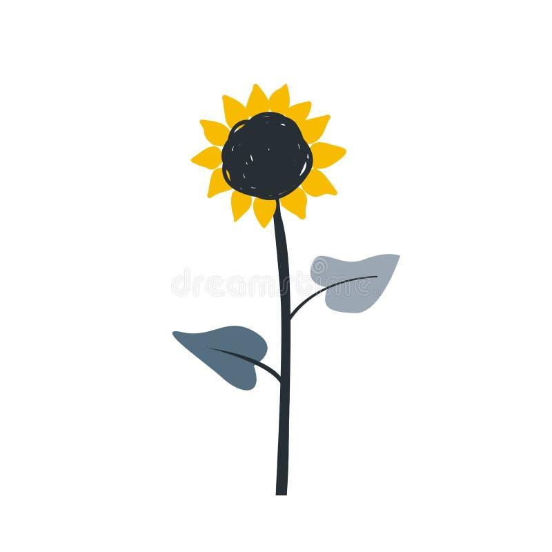 De rijpe schets van het zonnebloembeeldverhaal met grote bloesem en zadenschets Ge?soleerde vectorillustratie op zwarte achtergro vector illustratie
