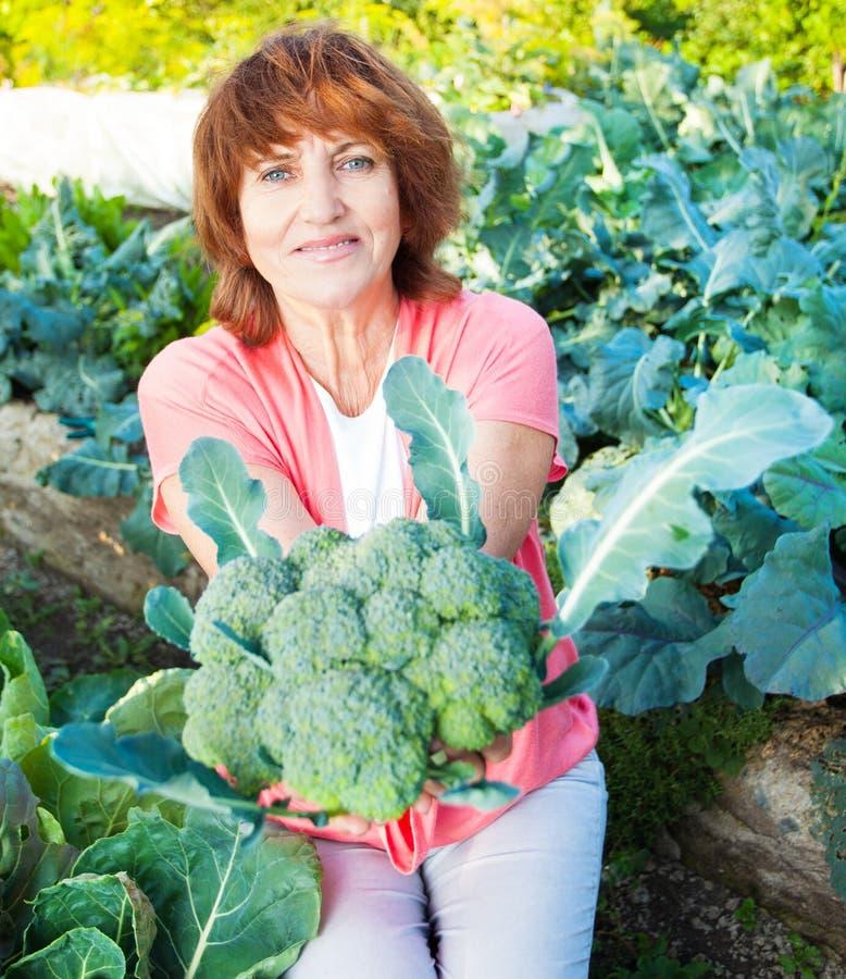 De rijpe vrouw kweekt oogst in de tuin royalty-vrije stock afbeelding