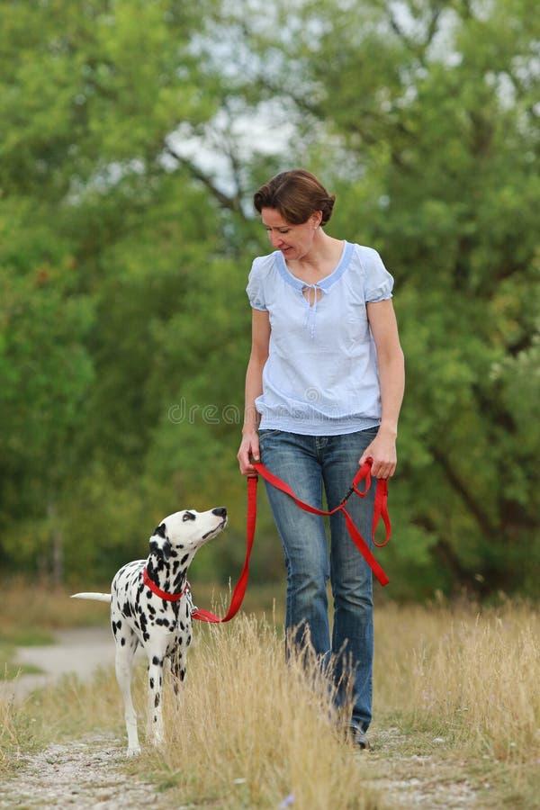 De rijpe vrouw loopt een Dalmatische hond op een leiband in aarden royalty-vrije stock fotografie