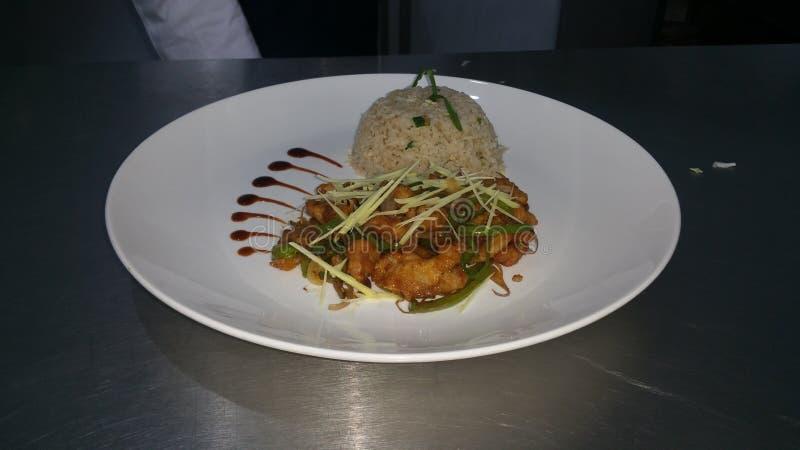 de rijst en de kip van ruggegratenspaanse pepers pice stock fotografie