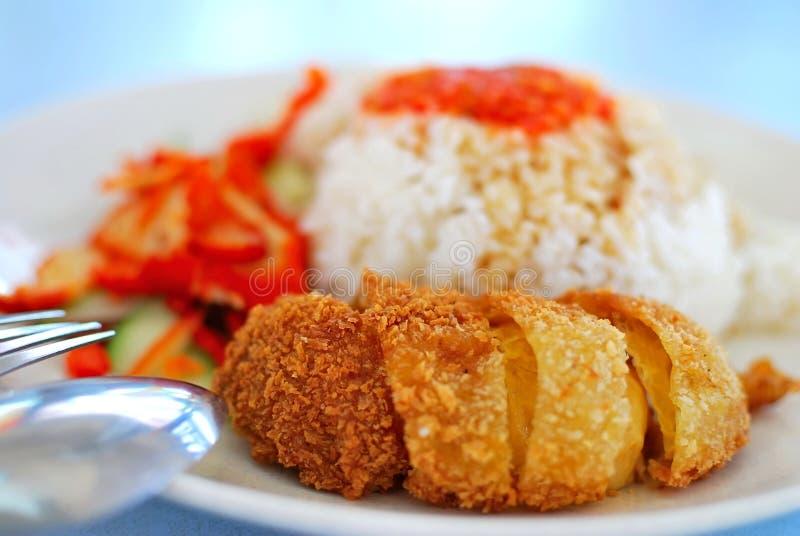 De rijstdelicatesse van de kip stock afbeelding
