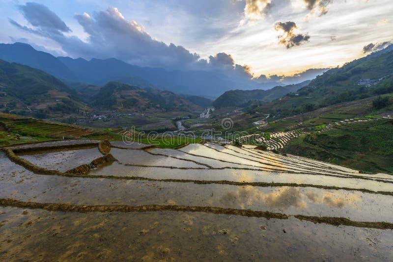 De rijstterrassen in het regenachtige District van seizoensapa, Lao Cai Provinc stock fotografie