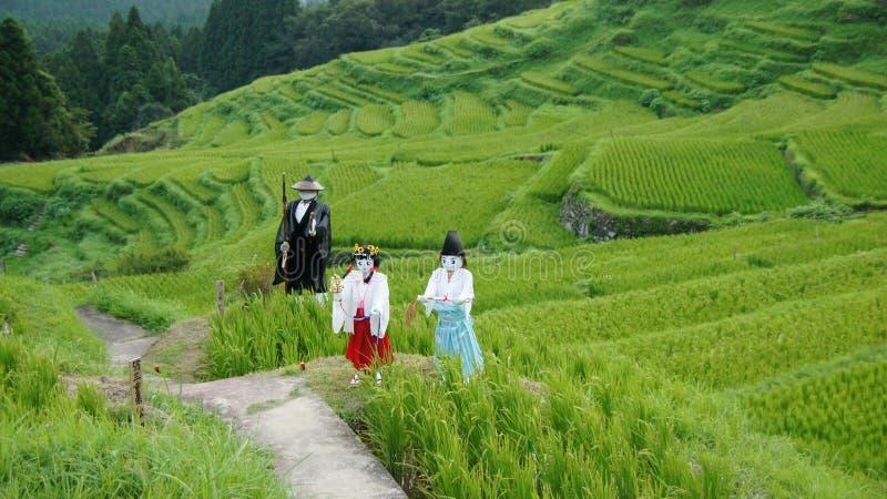 De rijstterrassen van Maruyamasenmaida in Japan stock fotografie