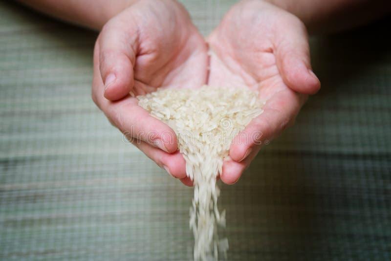 De rijstzaden worden gegoten van de palmen van de landbouwer royalty-vrije stock foto
