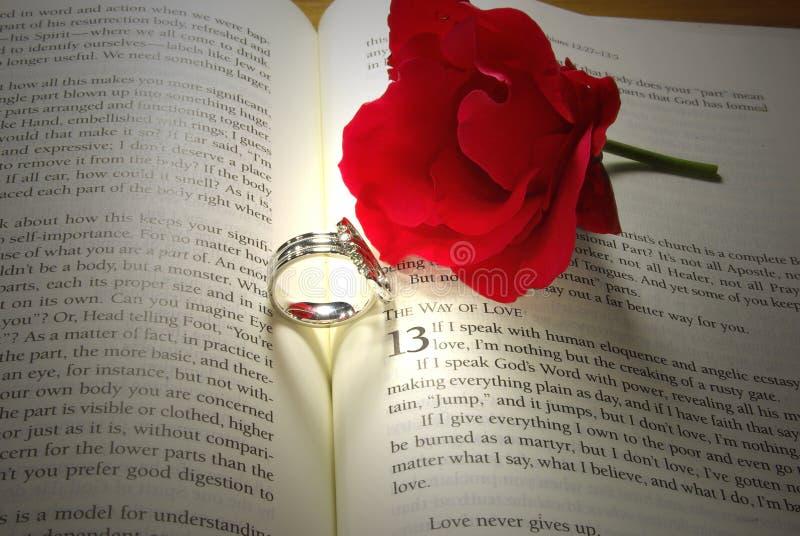 De ringen en namen op Bijbel toe stock foto