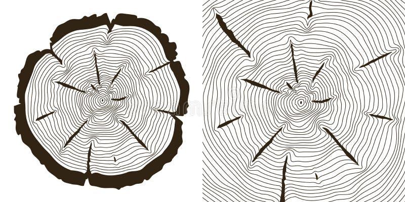 De ringen van de boomgroei, de besnoeiingen vectorillustratie van de zaagboomstam royalty-vrije illustratie