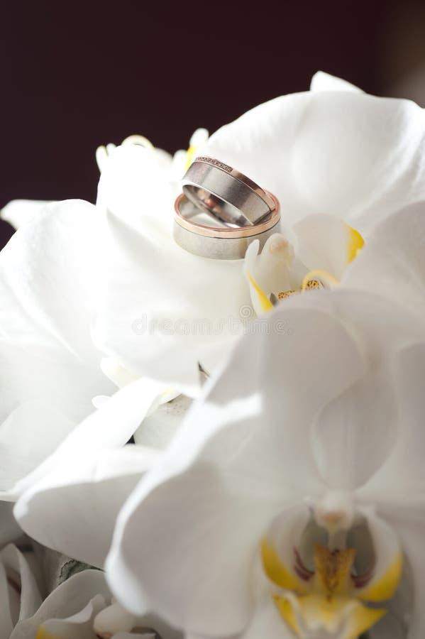 De ringen van de gouden bruiloft het leggen stock afbeelding