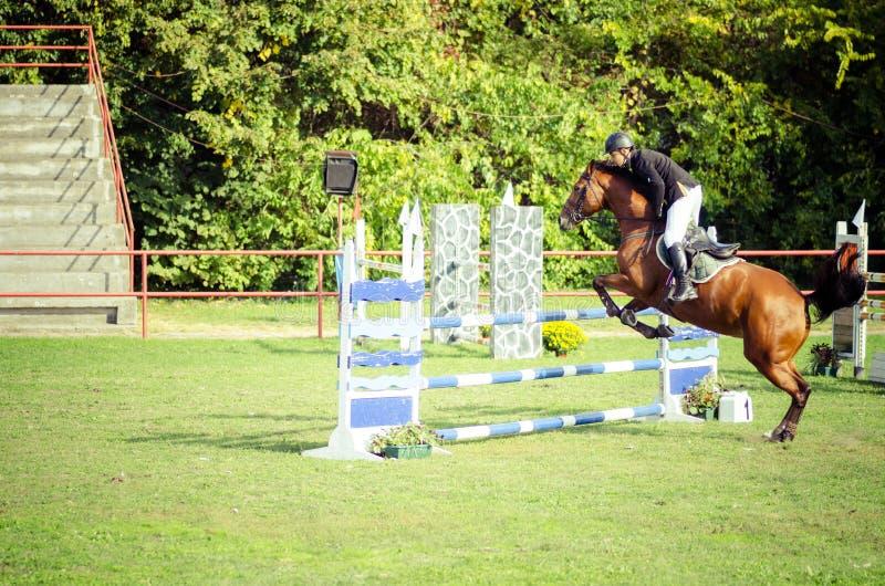 De rit mooi bruin paard en sprong van de jonge mensenjockey over de bifurcatie in ruitersportclose-up royalty-vrije stock afbeelding