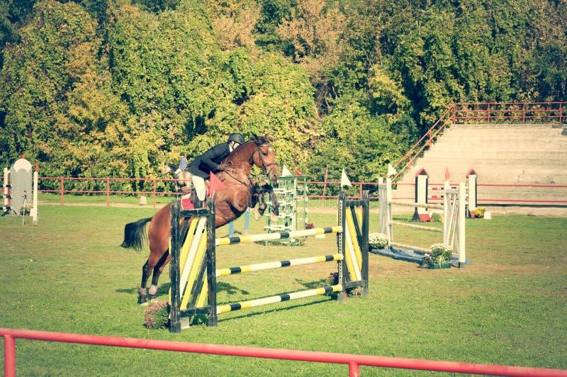 De rit mooi bruin paard en sprong van de jonge mensenjockey over de bifurcatie in ruitersportclose-up stock fotografie
