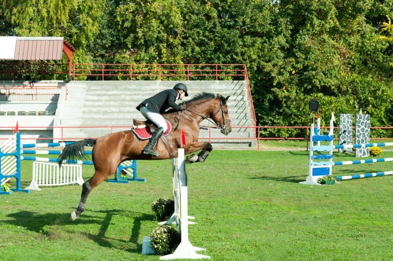 De rit mooi bruin paard en sprong van de jonge mensenjockey over de bifurcatie in ruitersportclose-up royalty-vrije stock foto's