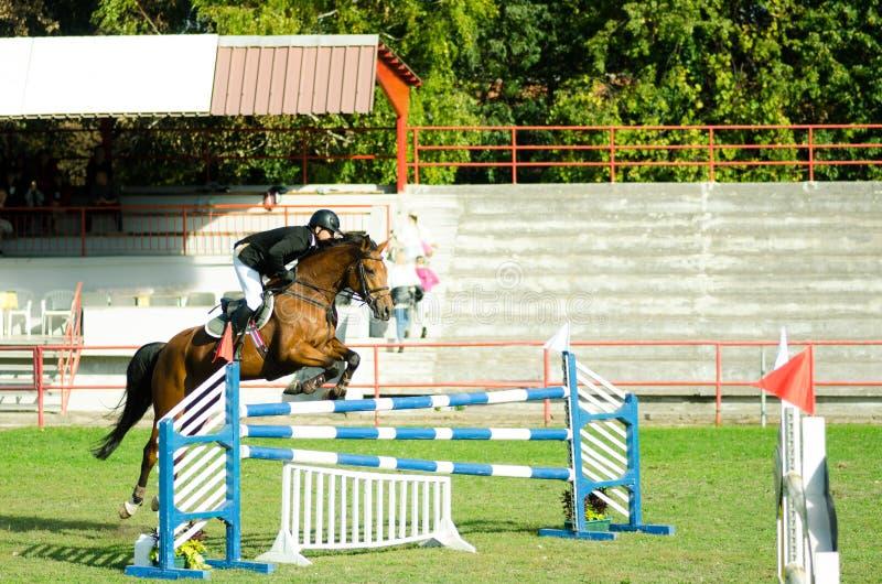 De rit mooi bruin paard en sprong van de jonge mensenjockey over de bifurcatie in ruitersportclose-up stock afbeeldingen