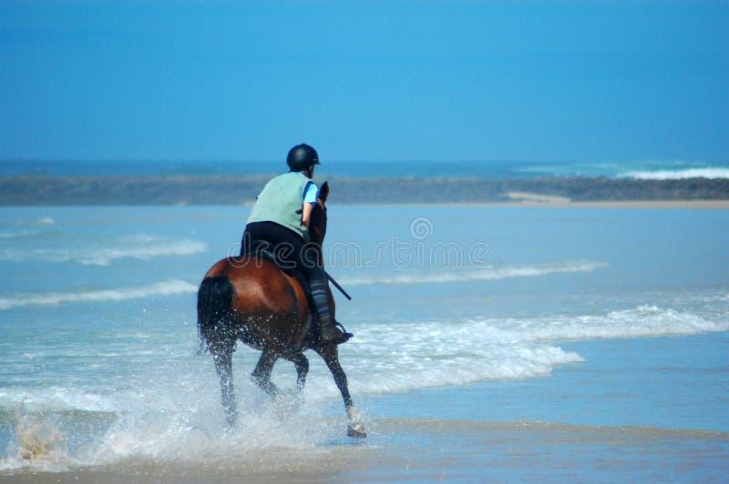 De rit van het strand stock afbeelding
