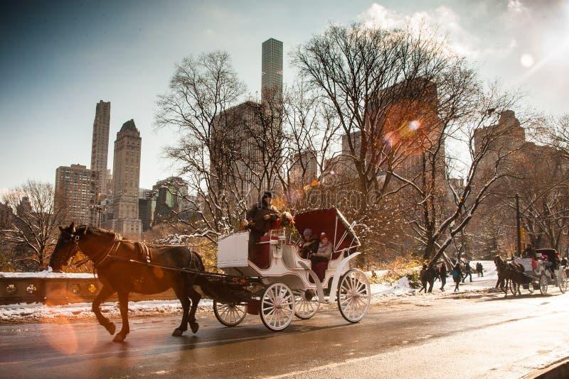 De Ritcentral park NYC van het paardvervoer royalty-vrije stock foto