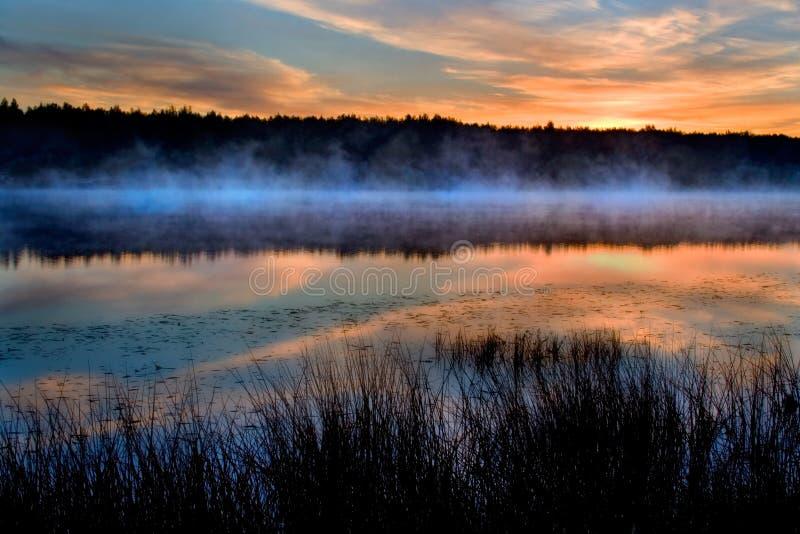 De rivier en het riet in een mist royalty-vrije stock foto's