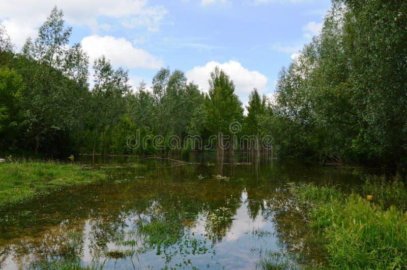 De rivier groeide na zware regens royalty-vrije stock fotografie