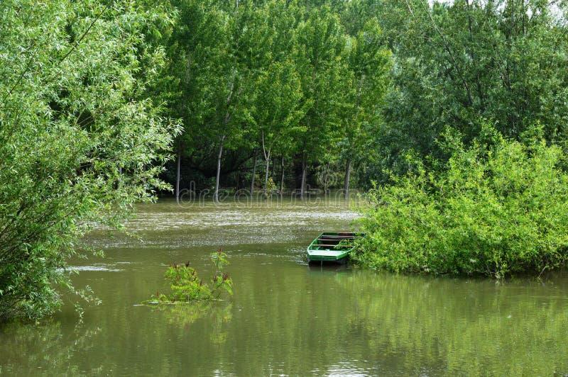 De rivier groeide na zware regens stock foto's