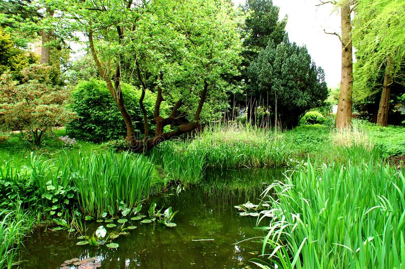 De rivier in het mooie botanische park in Kiel Germany stock afbeelding