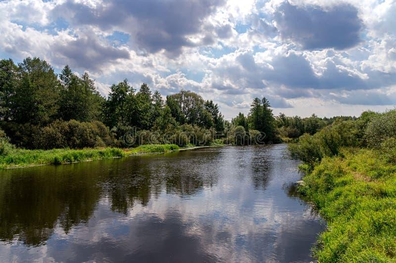De rivier met groene kust, gras en struiken stock afbeeldingen