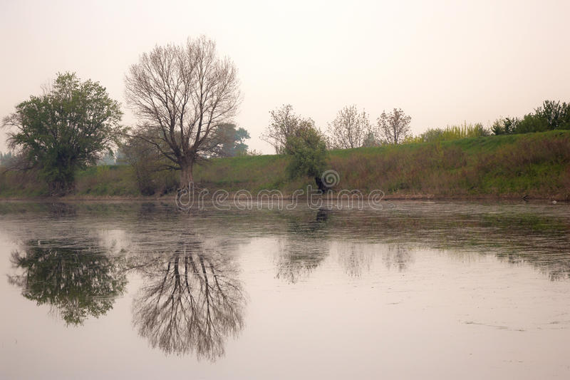 De rivier in Servië royalty-vrije stock foto's
