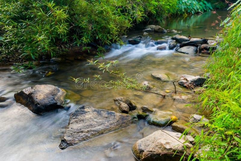De Rivier in Sri zat nationaal het parklandschap van Cha Na Lai, Sukhothai, Thailand stock foto's