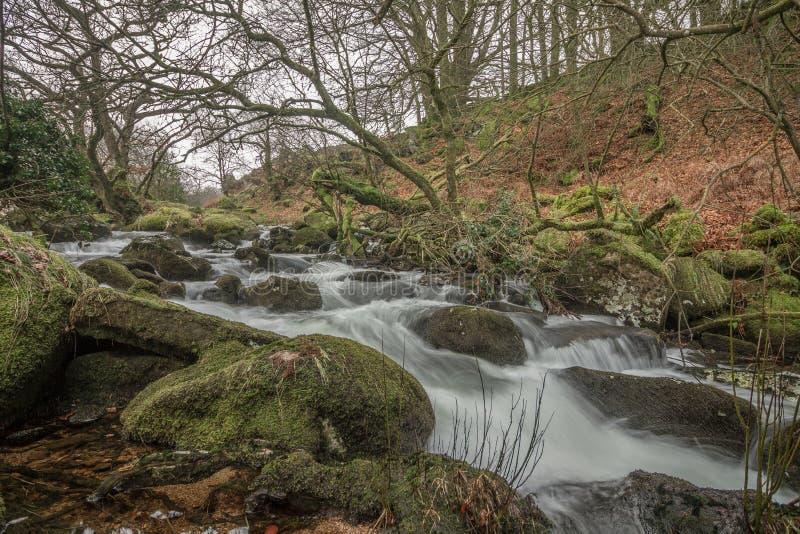 De rivier Taw, Devon het UK royalty-vrije stock foto