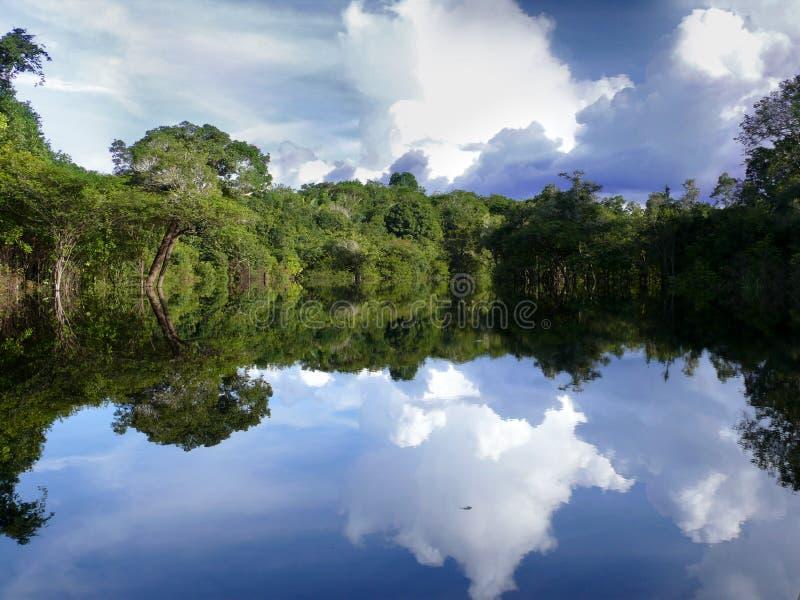 De rivier van Amazonië royalty-vrije stock foto's