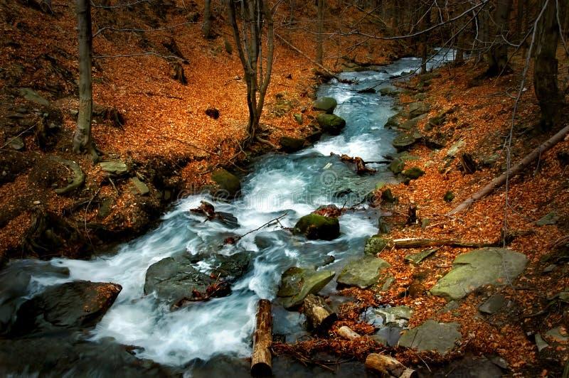 De rivier van Bialka stock afbeeldingen
