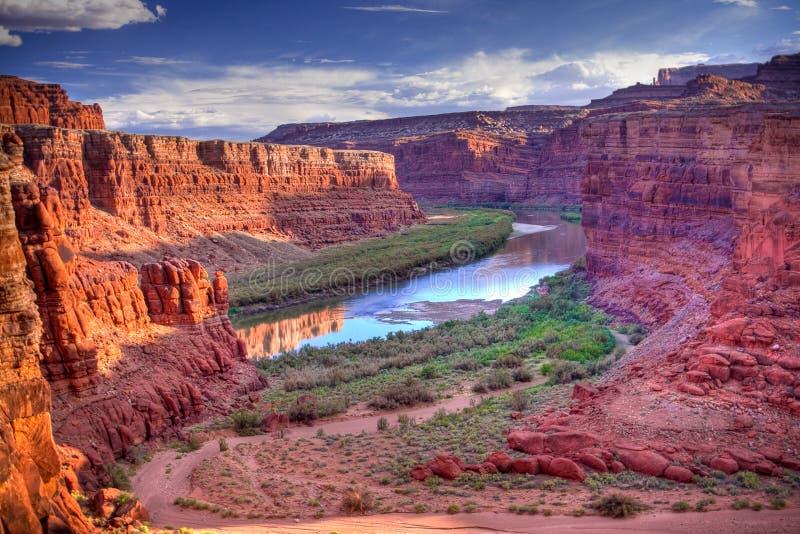 De Rivier van Colorado bij Nationaal Park Canyonlands stock foto's