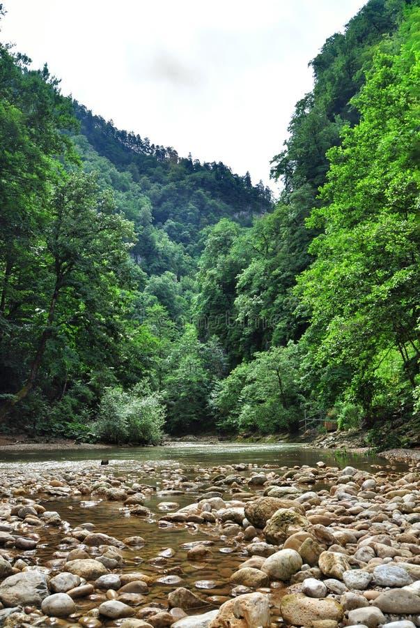 De rivier van de berg royalty-vrije stock foto's