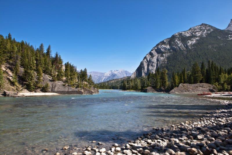 De Rivier van de boog - Nationaal Park Banff stock afbeelding