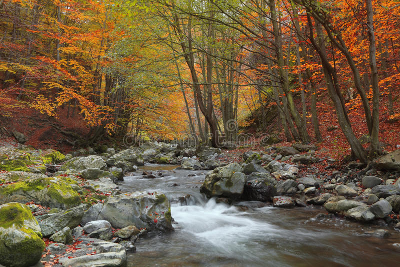 De rivier van de herfst royalty-vrije stock foto
