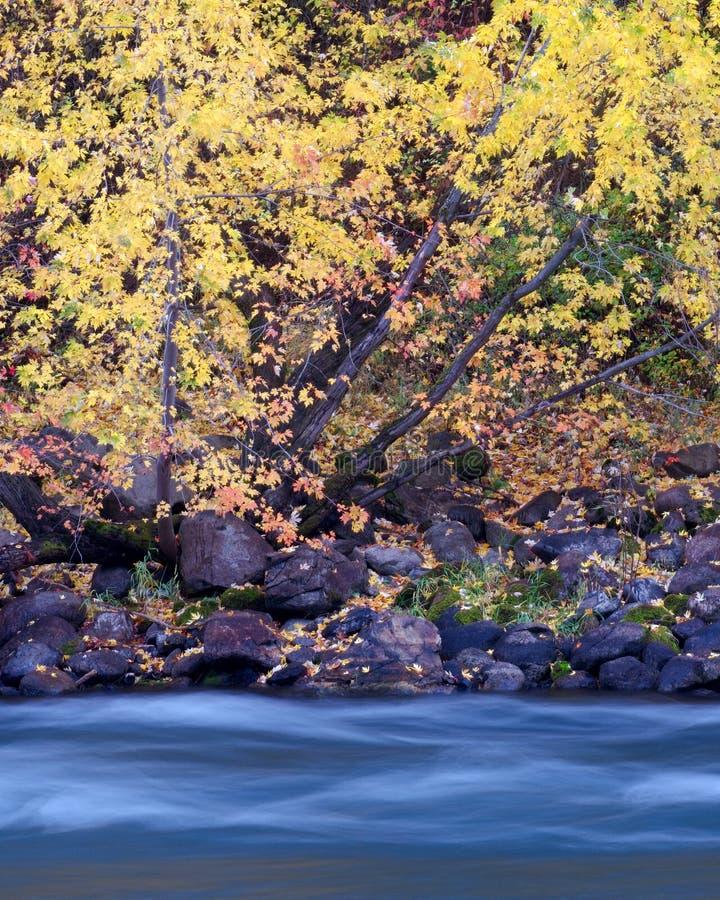 De Rivier van de herfst stock afbeeldingen