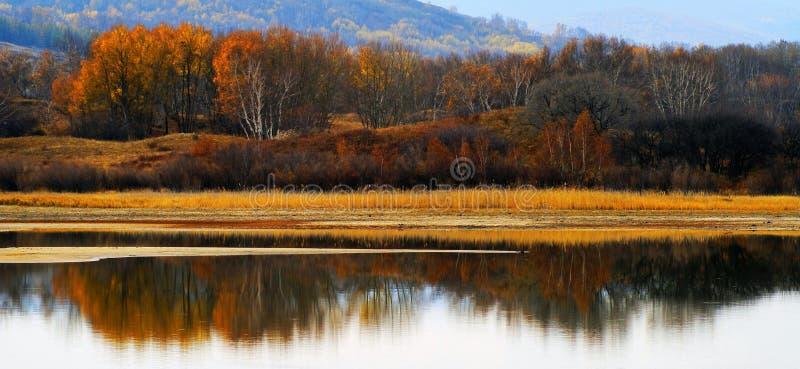De rivier van de parel stock foto