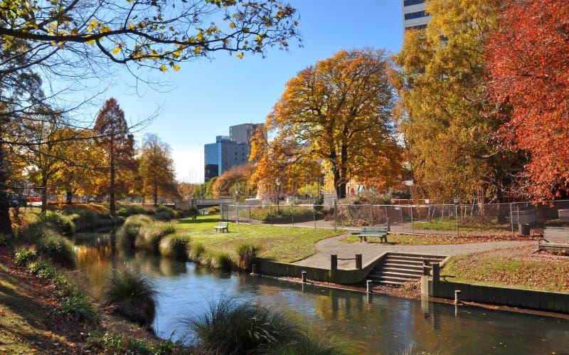 De Rivier van de Stad & van Avon van Christchurch in de Herfst royalty-vrije stock foto's