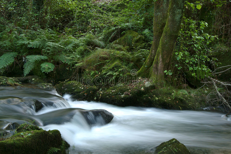 Download De rivier van de stroom stock afbeelding. Afbeelding bestaande uit beweging - 286895