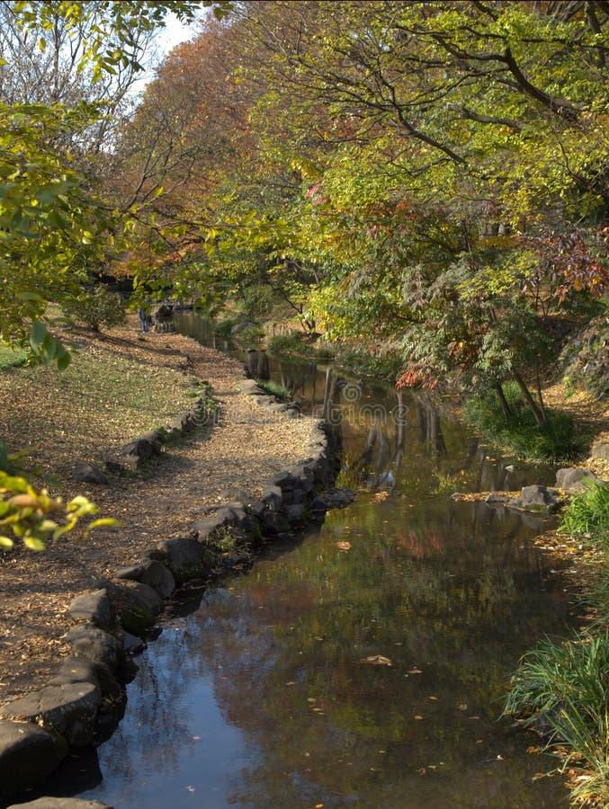 De Rivier van de Tuin van Japan stock afbeelding