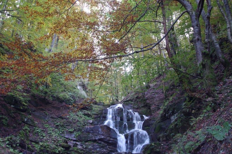De rivier van de watervalberg in rotsen Europa, de Oekraïne royalty-vrije stock foto