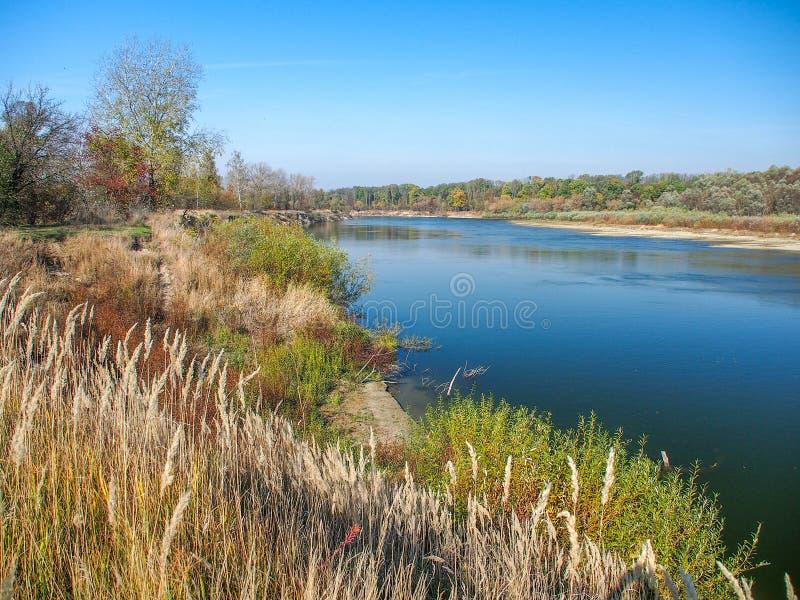 De rivier van de zomer stock fotografie