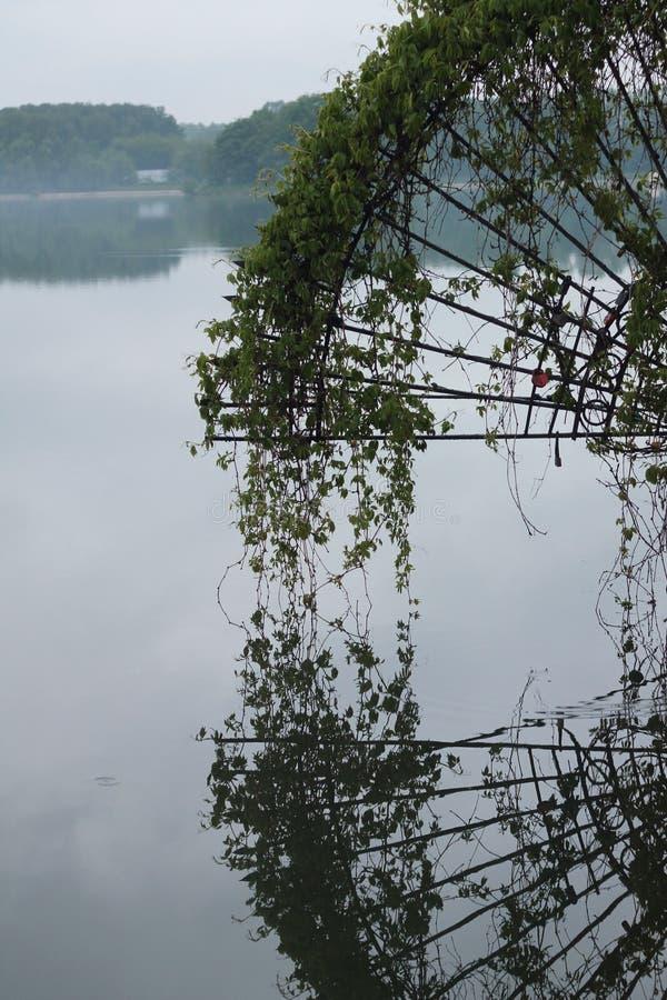 De rivier van het Leven stock fotografie