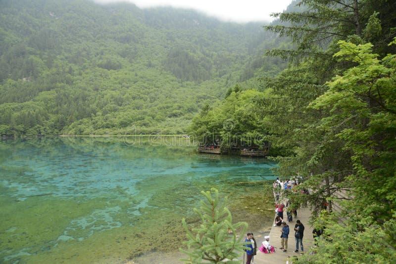 De rivier van de Jiuzhaigoupauw stock foto