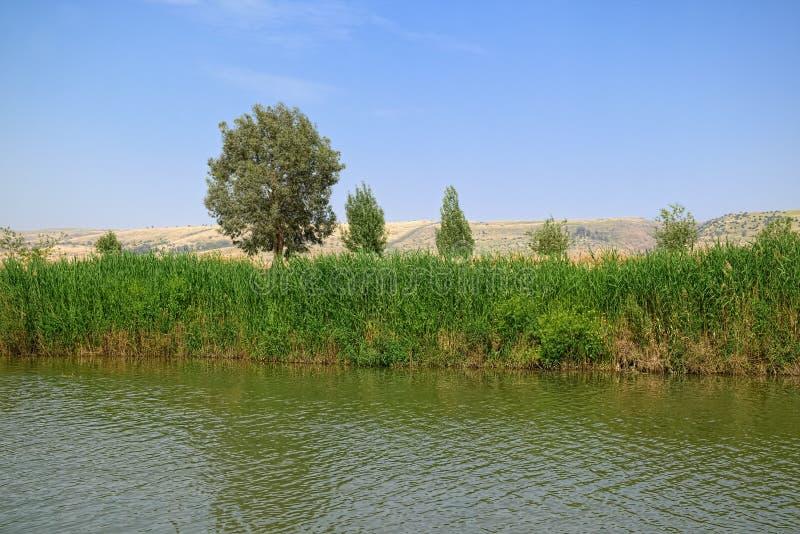 De rivier van Jordanië, Israël stock afbeeldingen
