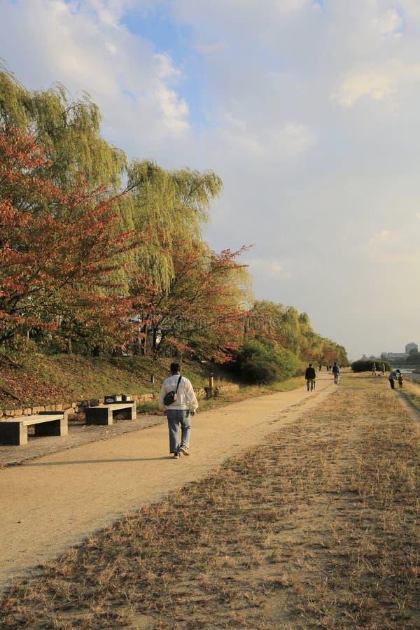 De Rivier van Kyoto, Japan - Kamo-townscape Ook genoemd geworden kamo-Gawa stock afbeeldingen