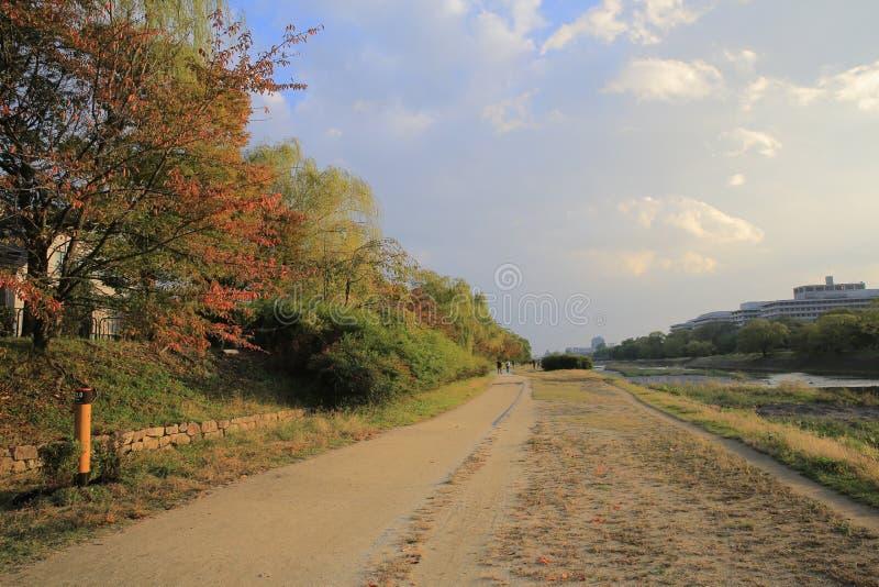 De Rivier van Kyoto, Japan - Kamo-townscape Ook genoemd geworden kamo-Gawa stock fotografie