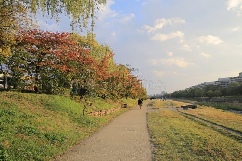 De Rivier van Kyoto, Japan - Kamo-townscape Ook genoemd geworden kamo-Gawa stock foto