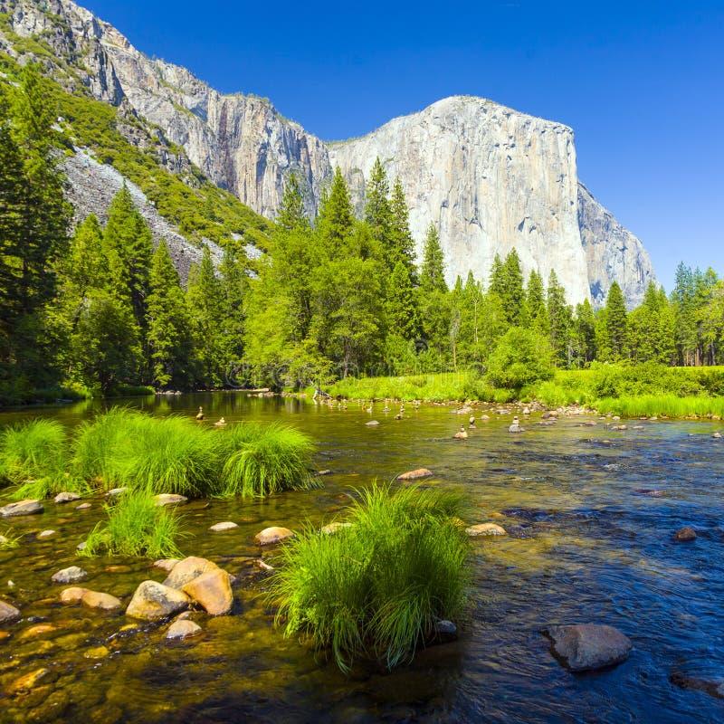 De Rivier van Merced bij Nationaal Park Yosemite royalty-vrije stock foto's