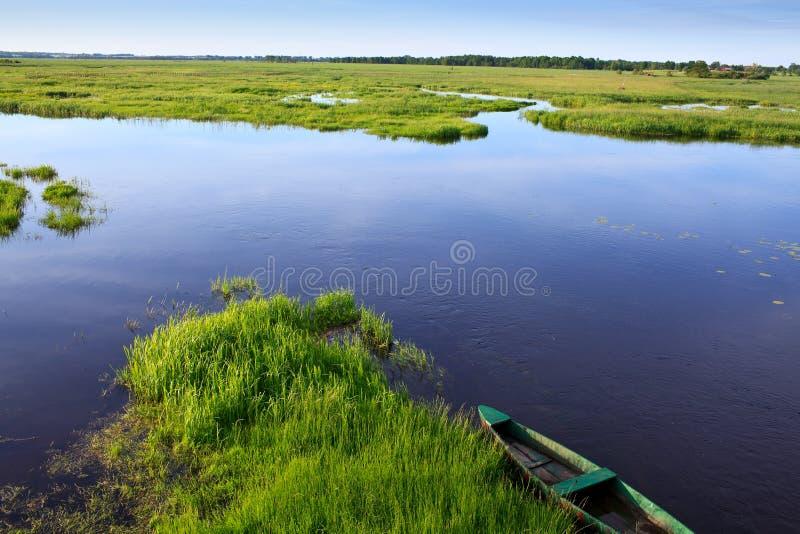 De rivier van Narew royalty-vrije stock fotografie
