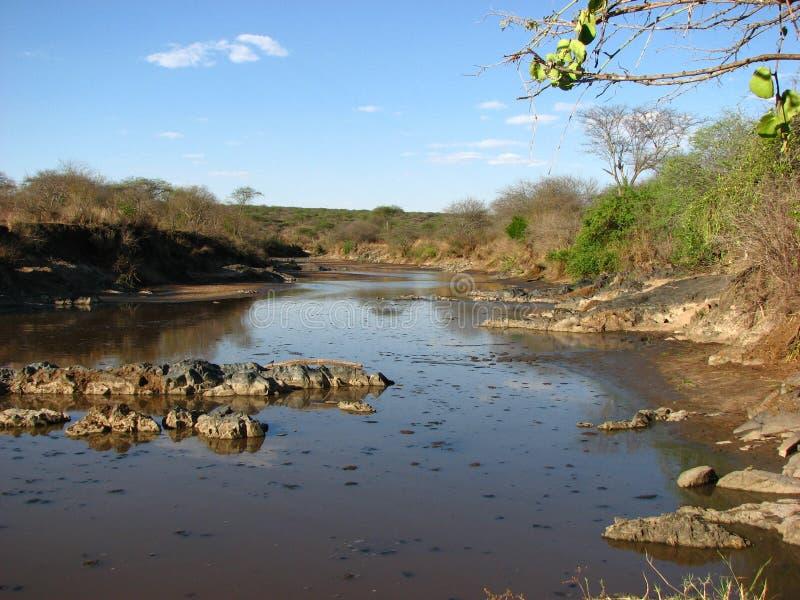 De rivier van Serengeti stock afbeelding