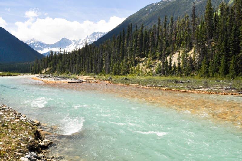 De rivier van vermiljoenen bij Kootenay Nationaal Park, Canada stock foto
