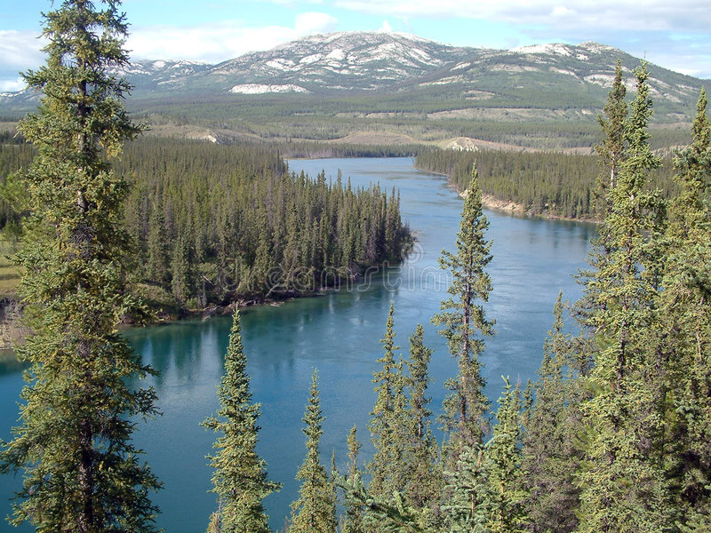 De rivier van Yukon stock afbeelding