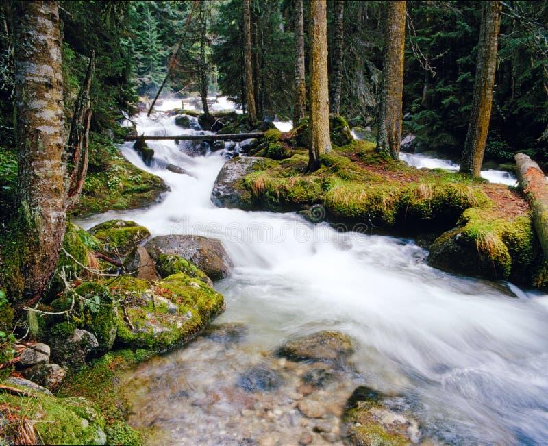 De riviereiland van de berg royalty-vrije stock foto's